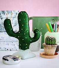 Cactus - Prickly Pincushion