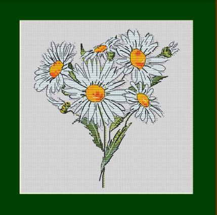 Daisies - Cross Stitch Embroidery Scheme